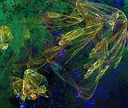 David Lane - Jelly Fish  Diving the Reef Series 1